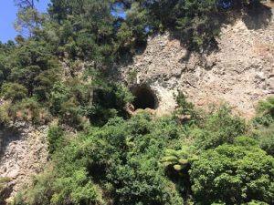 Māori Elder's Rock Cave