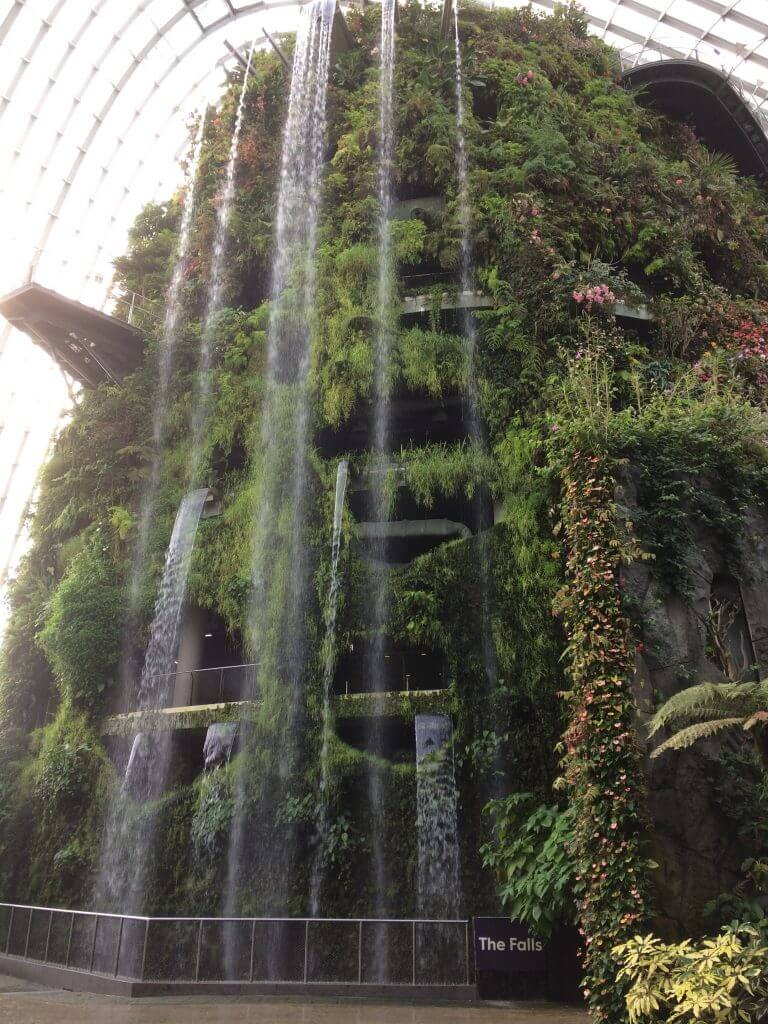The world's tallest indoor waterfall at Gardens by the Bay